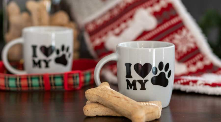 A Safe Pet Holiday Guide